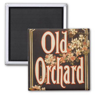 Old Orchard Detail - Magnet #1