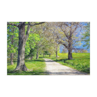 On the pathway to World's End Stretched Canvas Prints