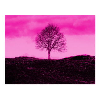 One Lone Tree Silhouette Hot Pink Landscape Postcard