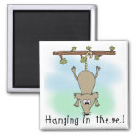 Opossum Hanging in There Square Magnet