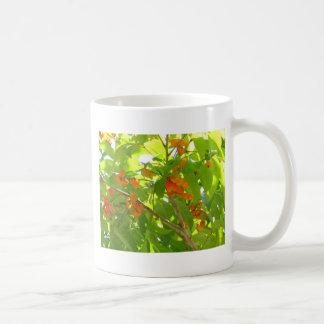 Orange Berries Basic White Mug