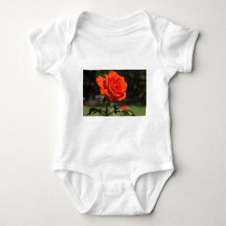 Orange Rose Tee Shirts