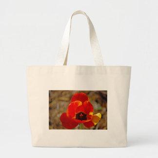 Orange Tulip... Jumbo Tote Bag
