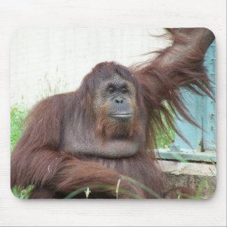 Orangutan Mousepad