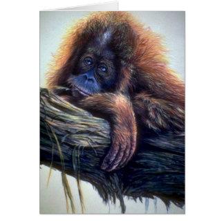 Orangutan study greeting card
