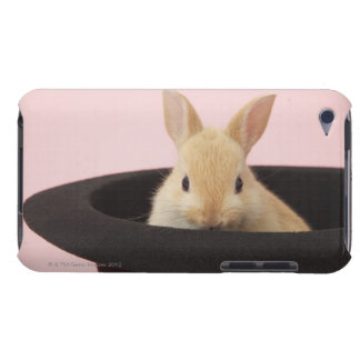 Oryctolagus cuniculus iPod touch cover