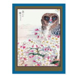 Owl in Cherry Tree Postcard