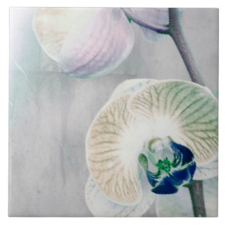 Painted Orchid Ceramic Tile