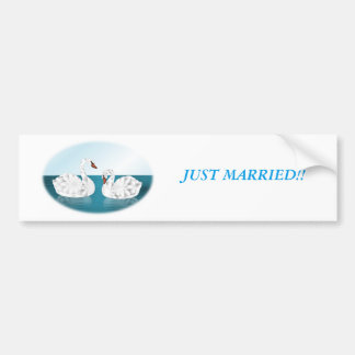 Pair of Swans on Pond, Oval Shaped Bumper Sticker