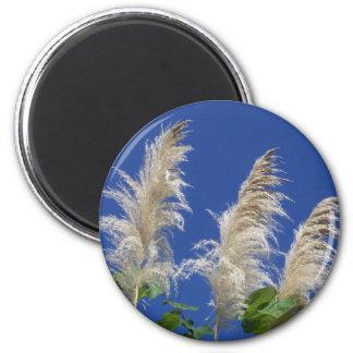 Pampas Grass In Bloom 6 Cm Round Magnet