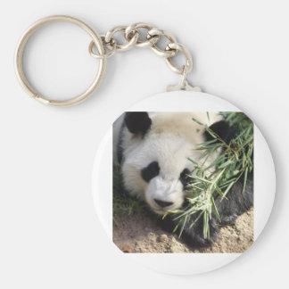 Panda Bear @ Zoo Atlanta Basic Round Button Key Ring
