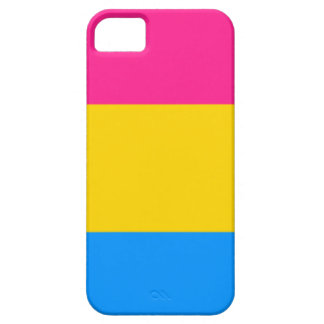 Pansexual flag iPhone 5 covers