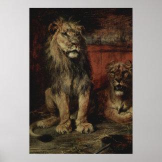 Paul Friedrich Meyerheim - Lions Poster
