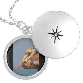 Pelican Profile Round Locket Necklace