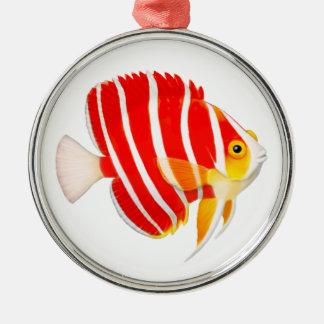 Peppermint Angelfish Ornament