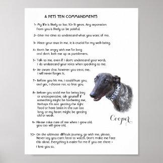 Pet Lover Poster