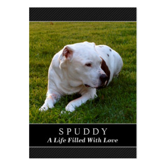 Pet Memorial Card Black Photo - Contented Poem Pack Of Chubby Business Cards