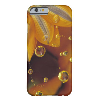 Petals on Mylar reflective surface with drops. Barely There iPhone 6 Case