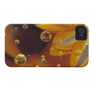 Petals on Mylar reflective surface with drops. Case-Mate iPhone 4 Cases