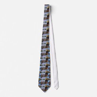 Phoenix Arizona Montage Tie