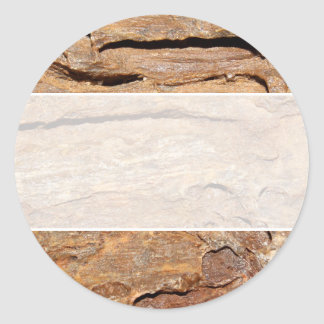 Picture of Fossilized Wood. Round Sticker