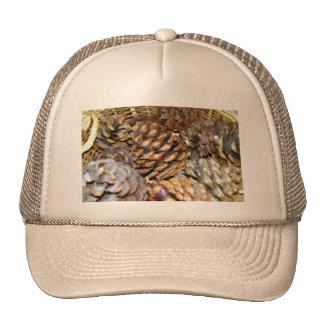 Pine Cones, Hat