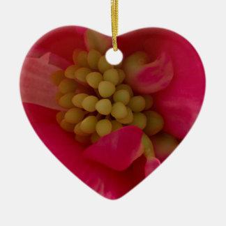 Pink Begonia Stamen Macro Ornament