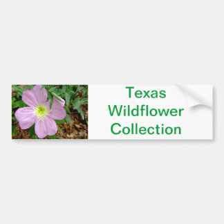 pink evening primrose texas wildlfower collection bumper sticker