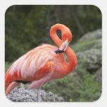 Pink Flamingo Square Sticker