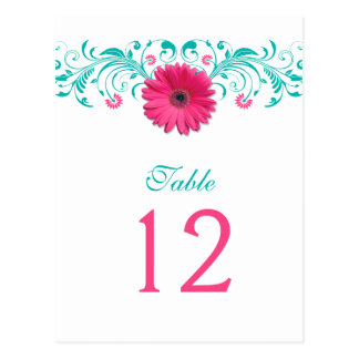 Pink Gerbera Daisy Turquoise Table Number Card Postcard