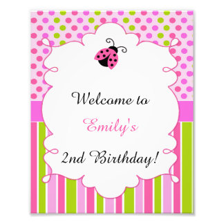 Pink Green Little Ladybug Welcome Party Sign Photo Art
