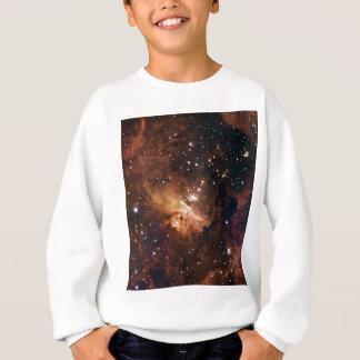 Pismis 24 brown starry sky tshirt