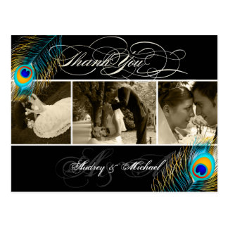 PixDezines Peacock Wedding Photos Thank you Postcard