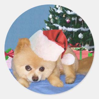 Pomeranian in Santa Hat Sticker