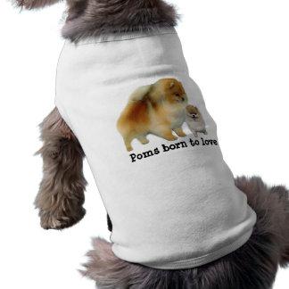 Pomeranian Pals Pet Clothing