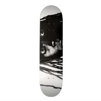 pop blacq skate boards
