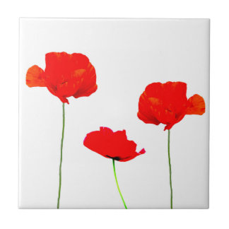 POPPY Collection 05 Tiles