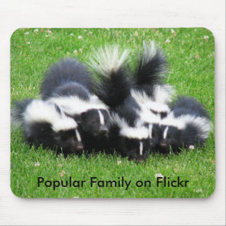 Popular Flickr Family Mouse Pad