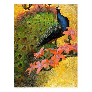 Postcard: Blue Peacock Postcard
