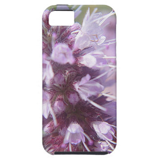 Pretty one of purple game blooms iPhone 5 cases