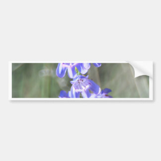 Pretty Purple Wildflowers Bumper Sticker