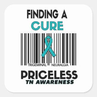Priceless...TN Square Sticker