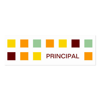 PRINCIPAL (mod squares) Pack Of Skinny Business Cards