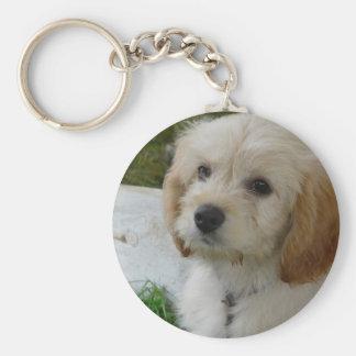 Puppy Love - Cute MaltiPoo Dog Photo Basic Round Button Key Ring