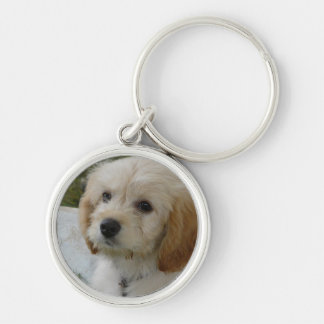Puppy Love - Cute MaltiPoo Dog Photo Silver-Colored Round Key Ring