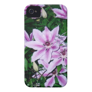 Purple and White Clematis iPhone 4 Covers