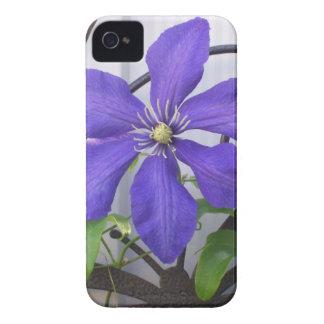 Purple Clematis iPhone 4 Case-Mate Case