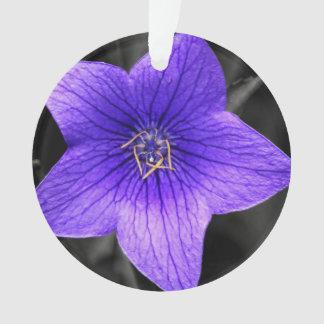 Purple Flower Close Up Macro Photo