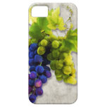 Purple & Green Grapes iPhone 5 Cover