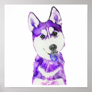Purple Husky Pup Poster